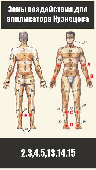 Используйте аппликатор Кузнецова при простудных заболеваниях на зонах 2,3,4,5,13,14,15
