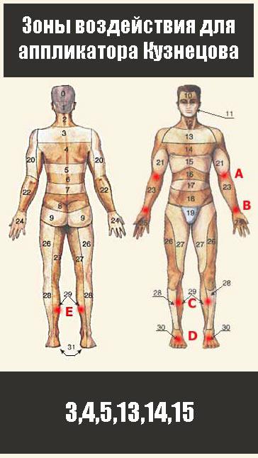 3,4,5,13,14,15 - зоны обработки апликатором Кузнецова при межрёберной невралгии