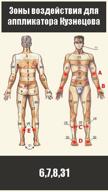 Обрабатываем область поясницы: 6,7,8 не забываем про ноги(область 31)
