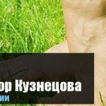 Аппликатор Кузнецова при плоскостопии для взрослых и детей